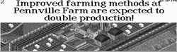 Farm doubles production